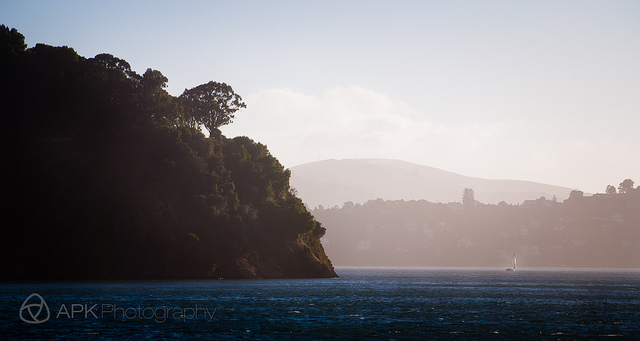 sunday morning meditation : with the wind…