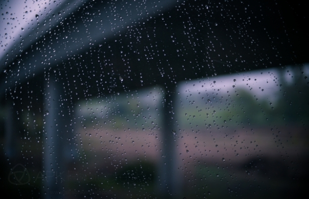 curtains, rain and passing landscape