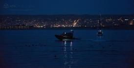 MontereyLightedBoats_2015_11_WM