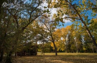 Scenes and details of fall foliage and autiumn colors in Wascana Centre, Regina, Saskatchewan