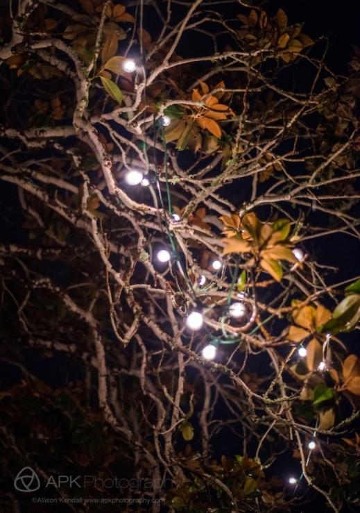 WM_ChristmasAdobes_Monterey-3976