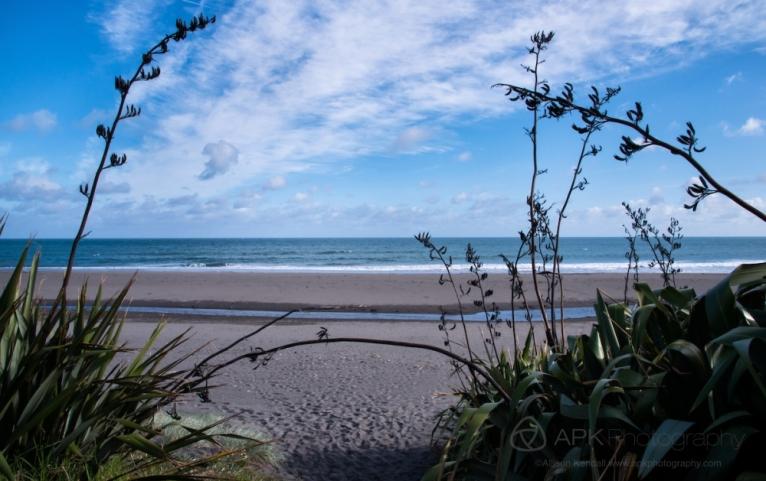 WM_Oakura_Beach_NZ_01