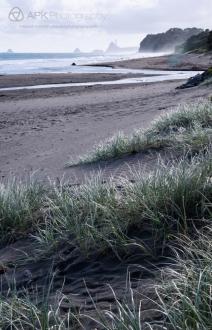 WM_Oakura_Beach_NZ_02