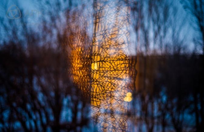 WM_winter_solstice-4214