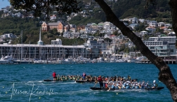 Scenes from along the waterfront of Wellington, New Zealand