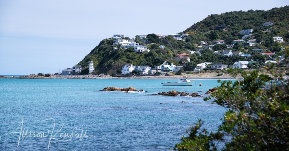WM_IslandBay_Wellington_NZ