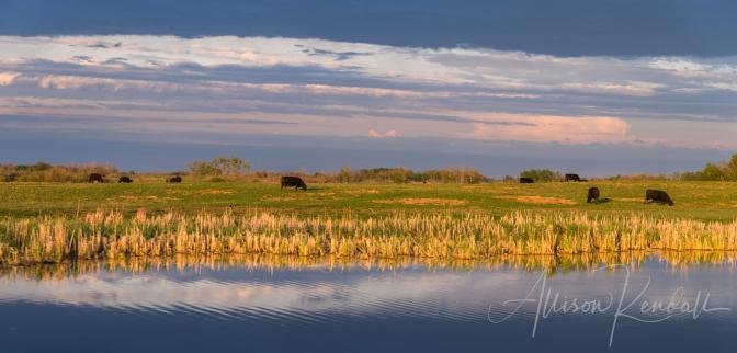 Sunset pastoral, Manitoba