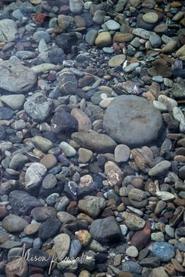 WM_Pelorus_River_NZ_17
