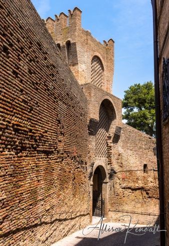WM_Corinaldo_Italy-1472