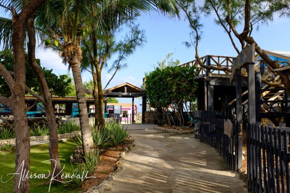 WM_NorthPoint_Barbados-0383