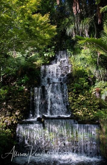 WM_Pukekura_Park_NZ_08