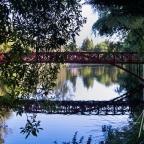 Pukekura Park | New Plymouth, New Zealand