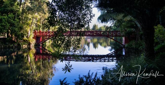 WM_Pukekura_Park_NZ_17