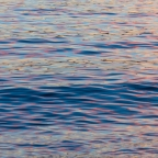 Sunset Water Abstracts   Vancouver, BC