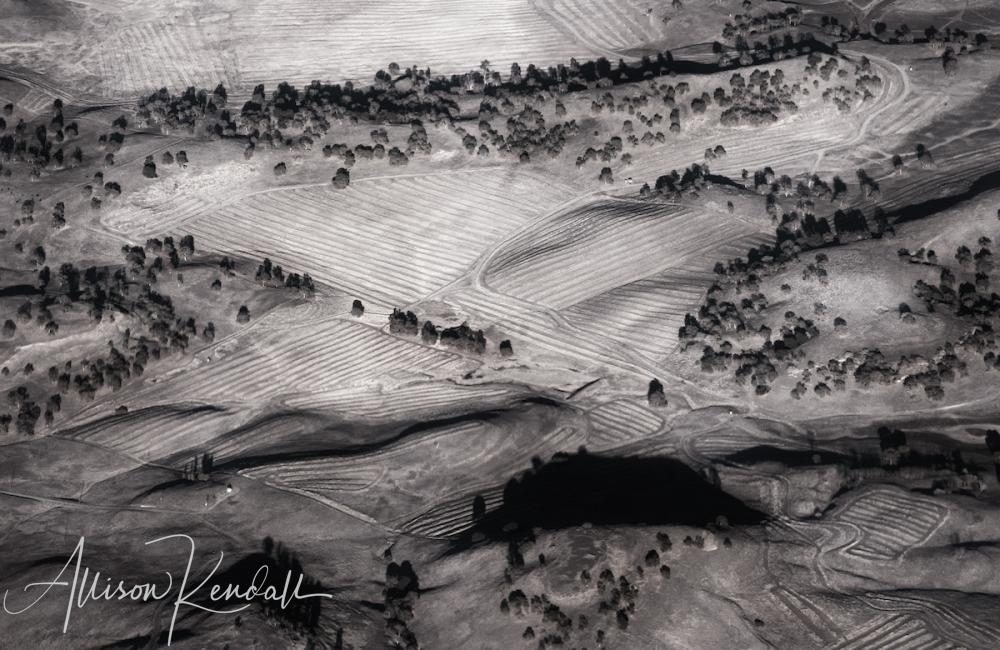 WM_aerial_BW_agricultural_hills
